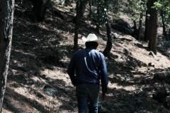 5-antonio-en-bosque
