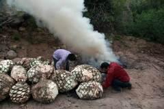 8santos-y-dengue-en-horno